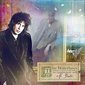 An Appointment with Mr Yeats de The Waterboys