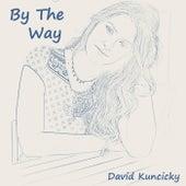 By the Way de David Kuncicky