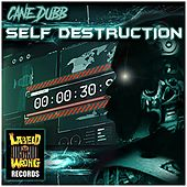 Self Destruction by Cane Dubb