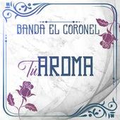 Tu Aroma by Banda el Coronel