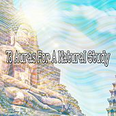 73 Auras for a Natural Study von Massage Therapy Music