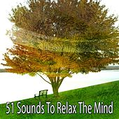 51 Sounds to Relax the Mind de Massage Tribe