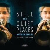 Still and Quiet Places by Matt Vangjel
