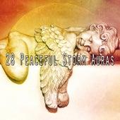 28 Peaceful Storm Auras by Rain Sounds Nature Collection