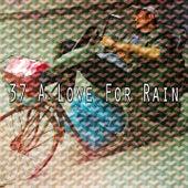 37 A Love for Rain de Thunderstorm Sleep