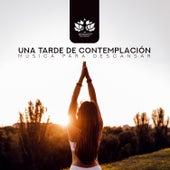 Una Tarde de Contemplación: Música Para Descansar de Meditación Música Ambiente