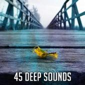 45 Deep Sounds de Meditación Música Ambiente