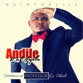 Ngimtholile by Andile Ka Majola