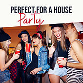 Perfect for a House Party de Various Artists