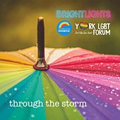Through the Storm de The Bright Lights