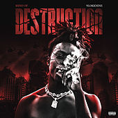 Mind Of Destruction de 9lokknine