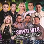 Super Hits de Claudia, Florin Salam, Jean De La Craiova, Liviu Guta, Nek, Nicolae Guță, denisa, Vali Vijelie