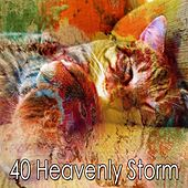 40 Heavenly Storm by Rain Sounds and White Noise