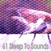 61 Sleep to Sounds de Smart Baby Lullaby