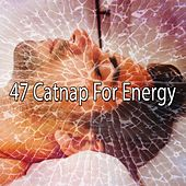 47 Catnap for Energy by Ocean Sounds Collection (1)