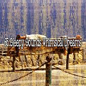 65 Sleepy Sounds Whimsical Dreams de White Noise Babies