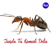Janda Ta Kamudi Dela by Sagar