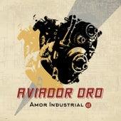 Amor industrial 4.0 de Aviador Dro