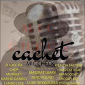 Mic check the analogy by Cachet