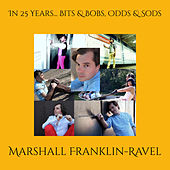 In 25 Years... Bits & Bobs, Odds & Sods von Marshall Franklin-Ravel
