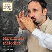 Harmonica Melodies de Sabir Khan: tabla