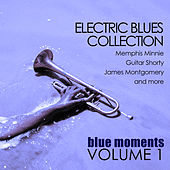 Electric Blues Collection: Blue Moments, Volume 1 von Various Artists