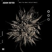 What You Need (Kölsch Remix) de Adam Beyer