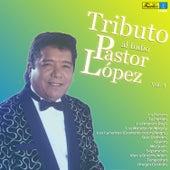 Tributo al Indio Pastor López, Vol. 4 von Pastor Lopez