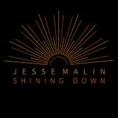 Shining Down (Single Mix) by Jesse Malin