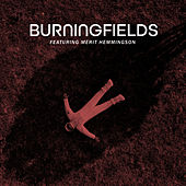 Spaceship Earth (Acoustic) de Burning Fields