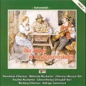 Die Zither in der Bauernstub'n - Folge 2 by Various Artists
