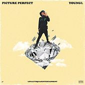 Picture Perfect by Young L