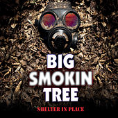 Shelter in Place by Big Smokin Tree