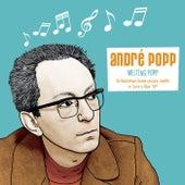 Melting Popp de André Popp
