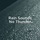 Rain Sounds No Thunder by Rain Sounds