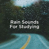Rain Sounds For Studying by Rain Sounds