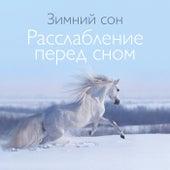 Зимний сон (Расслабление перед сном, Мышечная релаксация, Тишина) by Deep Sleep Music Academy