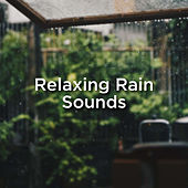Relaxing Rain Sounds by Rain Sounds