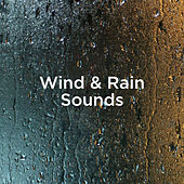 Wind & Rain Sounds by Rain Sounds