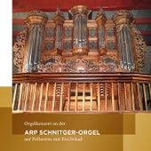 Orgelkonzert an der Arp Schnitger-Orgel auf Pellworm (Eva Schad spielt Orgelmusik von Frescobaldi, Scheidt, Tunder, Buxtehude, Raison, Bach, Kittel und Rinck) von Eva Schad