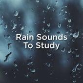 #1 Rain Sounds To Study de Thunderstorm Sound Bank
