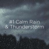 #1 Calm Rain & Thunderstorm de Thunderstorm Sound Bank