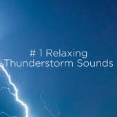 # 1 Relaxing Thunderstorm Sounds de Thunderstorm Sound Bank