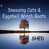 Sneezing Cats and Eggshell Witch Boats von Shed