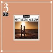 The Best of Sentimental Journeys von 101 Strings Orchestra