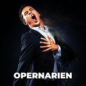 Opernarien von Various Artists