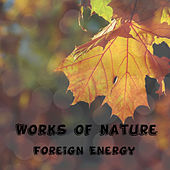 Works of Nature de Flevin Young