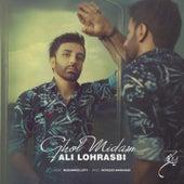 Ghol Midam by Ali Lohrasbi