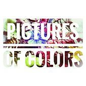 Windows by Pictures of Colors