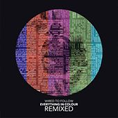 Everything in Colour (Remixed) by Wired to Follow
